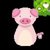 Киви-Свин